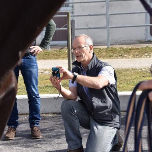 Pferde-Fortbildung mit Dr. Jean-Marie Denoix